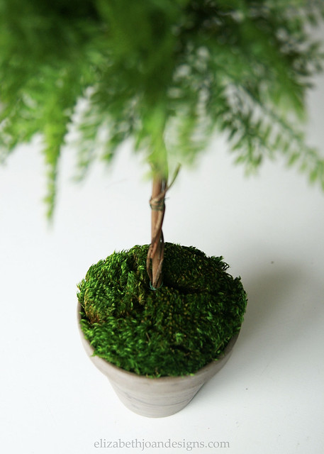 Faux Topiaries 11