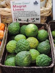Magrut Limes