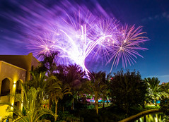Fireworks (24 of 50).jpg