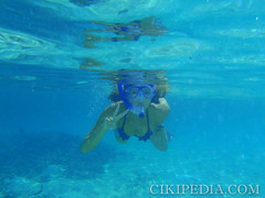 marine biology(0.0), reef(0.0), snorkeling(1.0), swimming(1.0), sports(1.0), recreation(1.0), azure(1.0), water sport(1.0), underwater(1.0),
