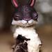 sleepy rabbit by oso_polar