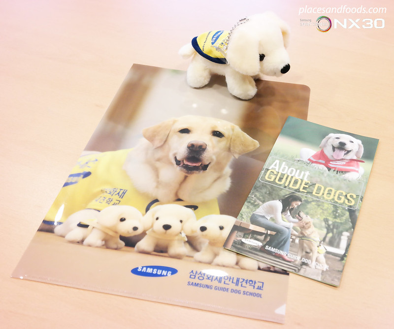 samsung guide dog gifts