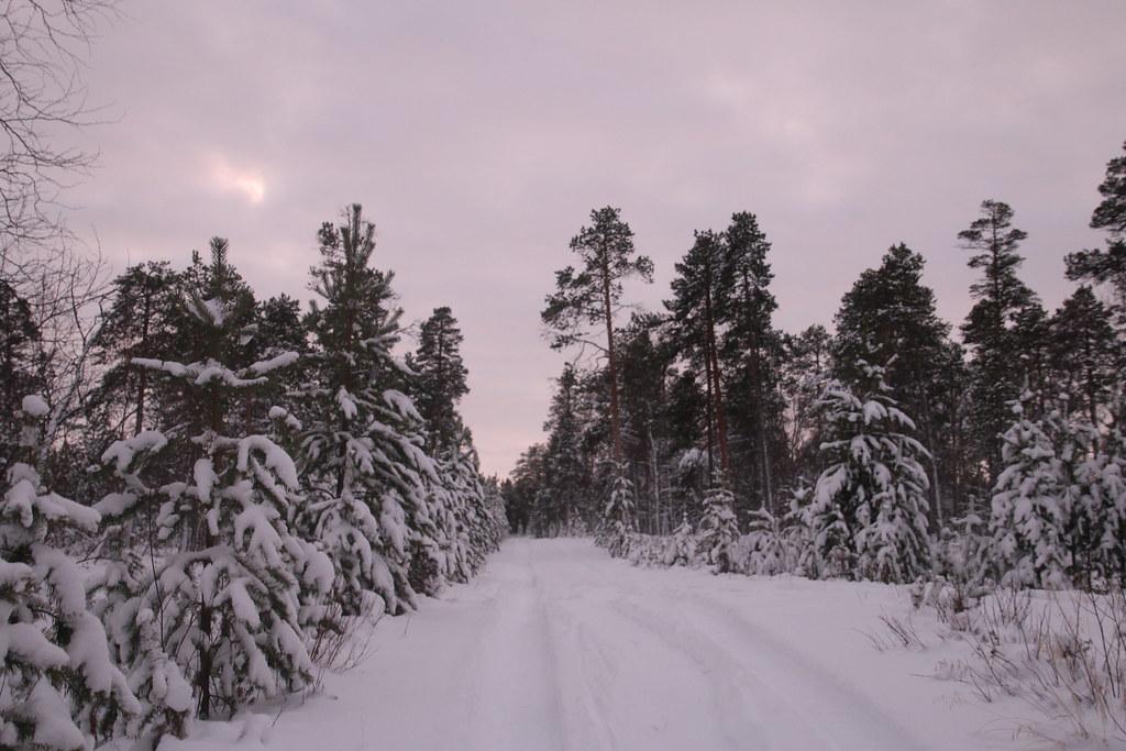 Finland038