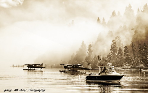 morning trees water fog sepia boat pacificnorthwest washingtonstate seaplane hoodcanal olympuse3