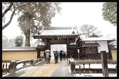 日本京都-金閣寺-雪.11