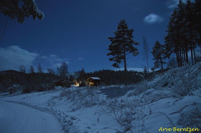 My neighbourhood in moonlight