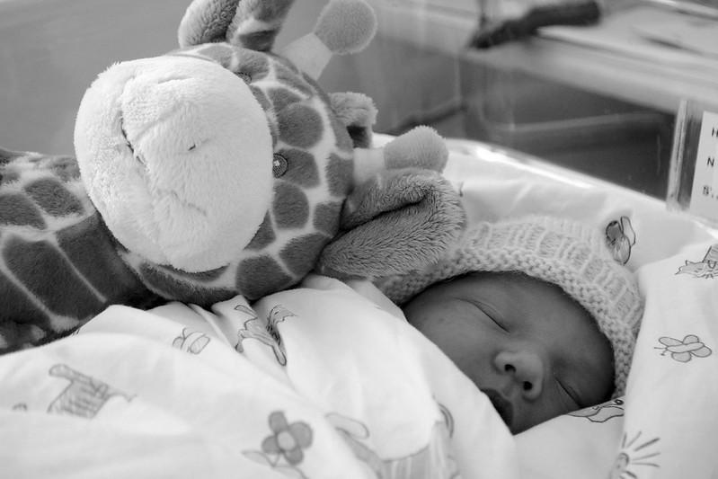 vauvamuok