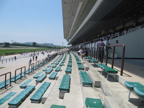 京都競馬場の観覧席1階