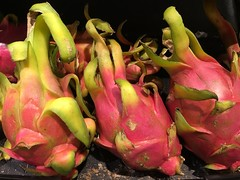 Dragon Fruit  Showing Off