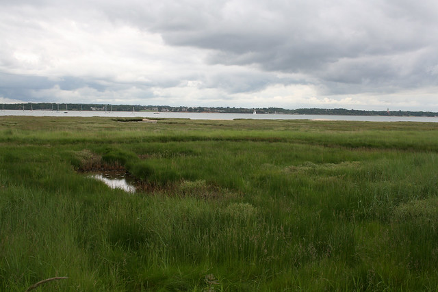 Marshes beside Southampton Water at Hythe