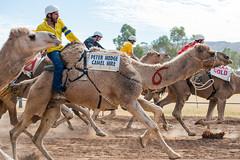 Lasseters Camel Cup, Alice Springs, Australia.