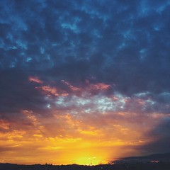 11/20/14  #sunset #losangeles #dailynature #naturelovers #vscocam #vsco