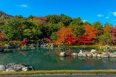 The Sōgen Pond (Garden)