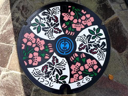 Shimosuwa Nagano, manhole cover (長野県下諏訪町のマンホール)