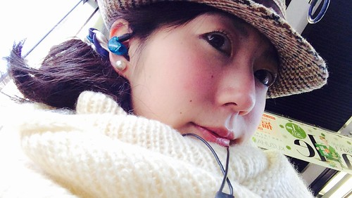 shure earphone SE215