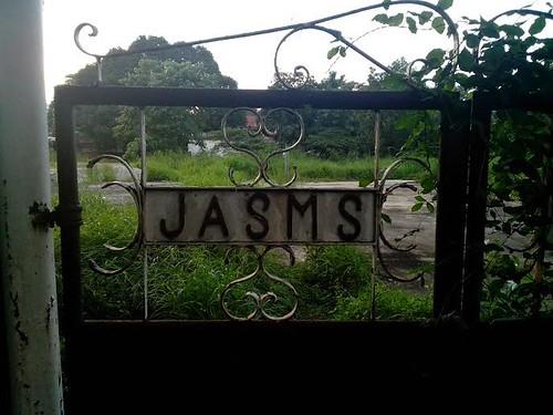 jasms