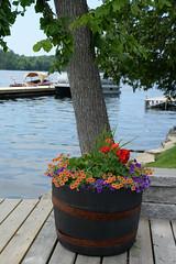 Sand Lake, Rideau Canal, Ontario