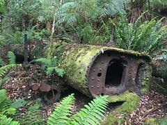 2014-11-24 Dip River Forest Reserve 45 - Rusting boiler