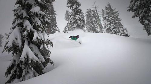 Glades at Squaw Valley