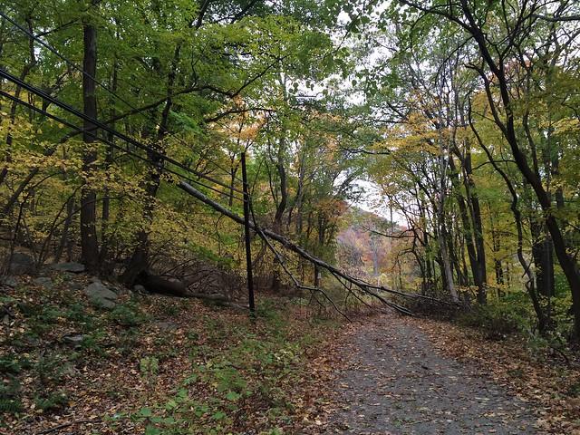 日, 2014-10-26 15:13 - Jones Pointの旧道