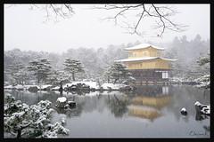 日本京都-金閣寺-雪.39
