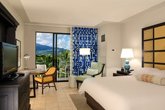 WYNDHAM GRAND RIO MAR Rainforest King