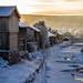Winter Bliss by ttronslien