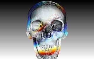 Cranium #1