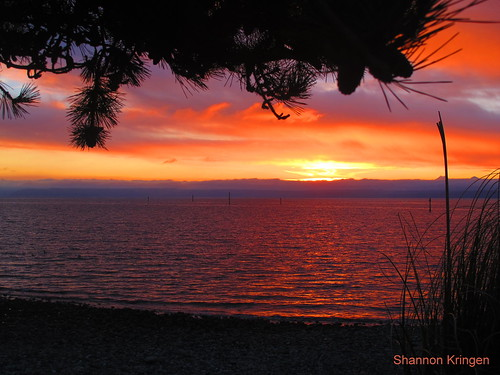whidbey island painted sky