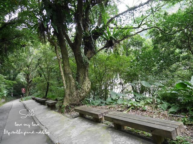 烏來景點內洞森林遊樂區