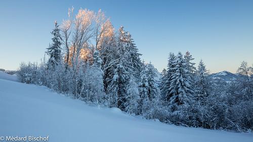 winter snow schweiz ostschweiz neujahr hoherhirschberg appenzellinnerrhoden rüte