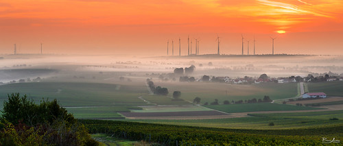 road street morning trees houses light sky panorama sun sunlight house building field yellow fog clouds sunrise canon buildings germany deutschland licht early warm dorf village nebel strasse hill foggy feld himmel wolken haus windmills hills gelb valley idyll sonne sonnenaufgang morgen sonnenstrahlen tal weg häuser rheinhessen früh hügel morgennebel nebelig windmühlen neblig nebelfeld nebelfelder rhenishhesse borisss1982 borisjordanphotography sunriseinrhenishhesse