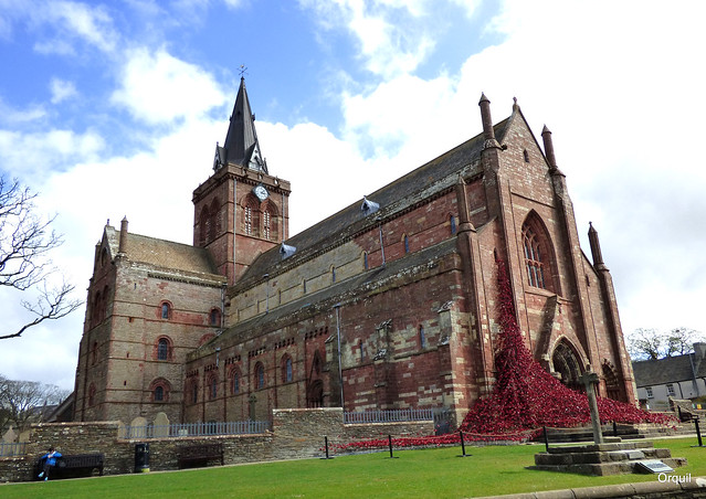 St Magnus Cathedral Poppy Display