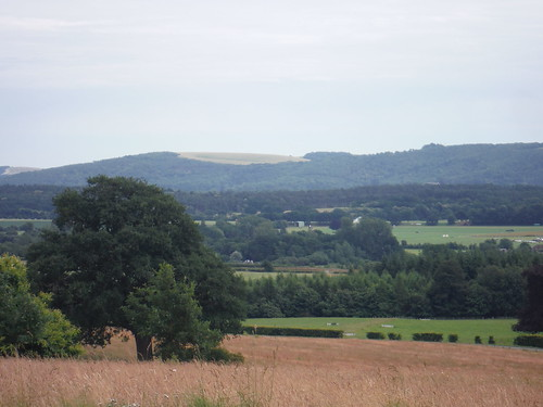 South Downs from Cowdray Park