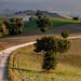 My way - ogni tanto ritorno su questa strada by Luigi Alesi