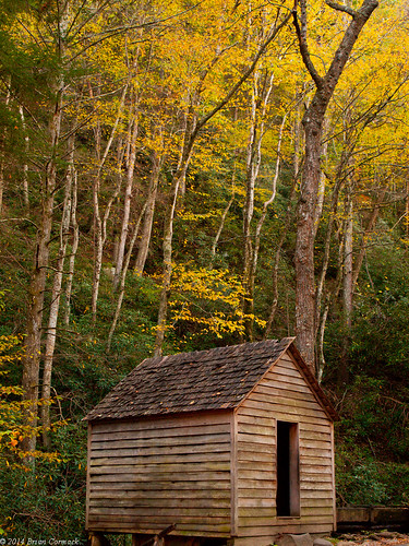 tennessee fallcolors smokymountains roaringfork greatsmokymountainsnationalpark roaringforkmotornaturetrail