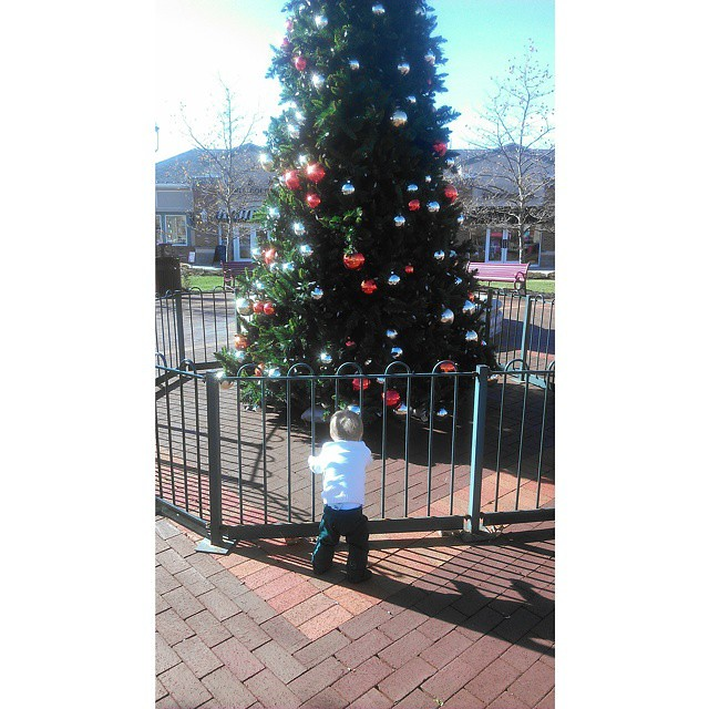 He thought the Christmas Tree at the shopping plaza was awesome!