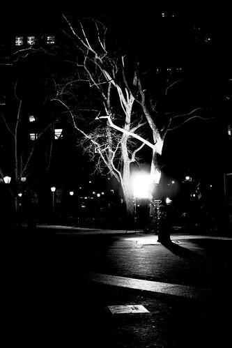 Foley Square lit up