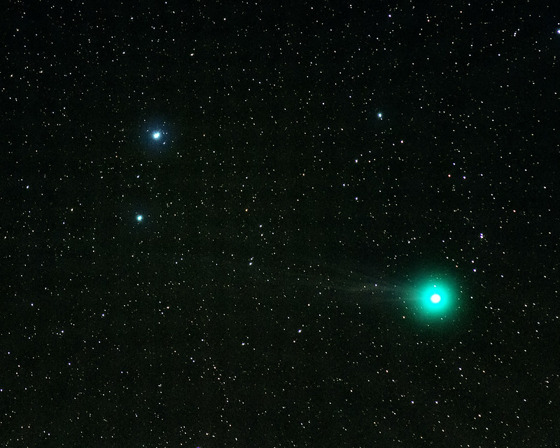 Comet 2014 Q2 Lovejoy by Mike Meynell