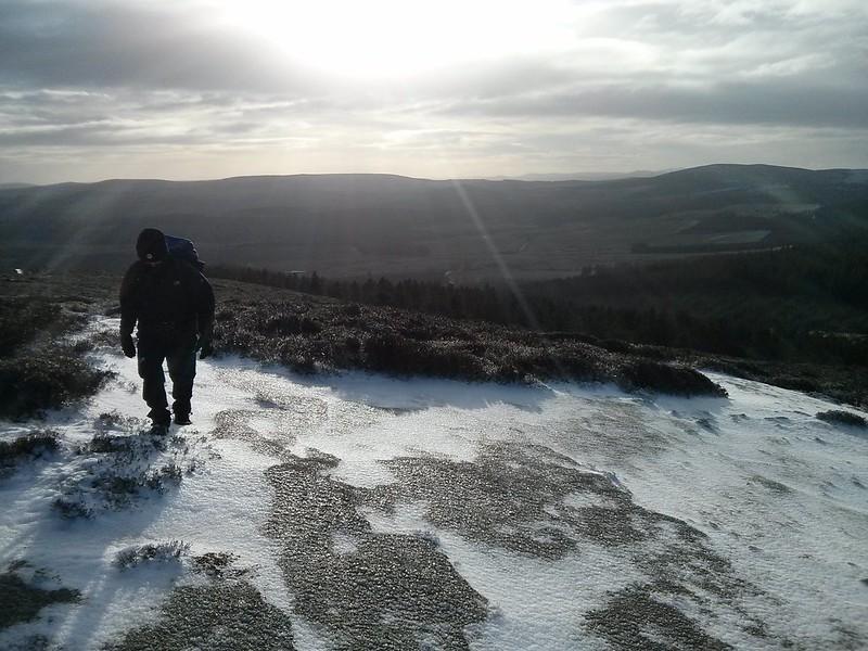 Summit of Pitfichie Hill
