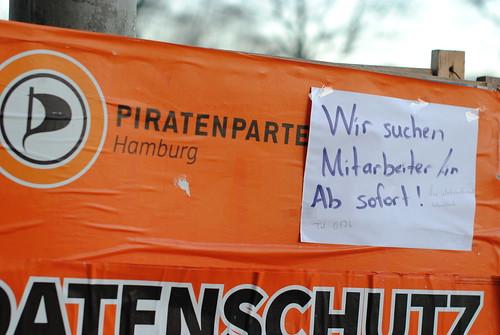 Piratennachwuchs