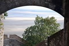 2014_Europe_France_Mont Saint Michel_Tidal Basin_1