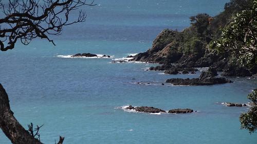Whale Bay, northland NZ