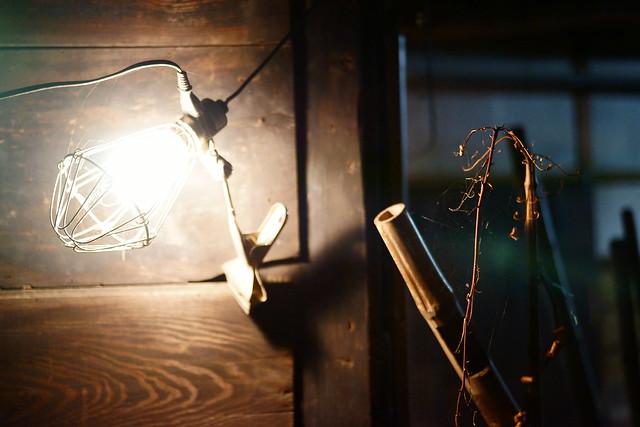 Photo:Light bulb By:haru__q