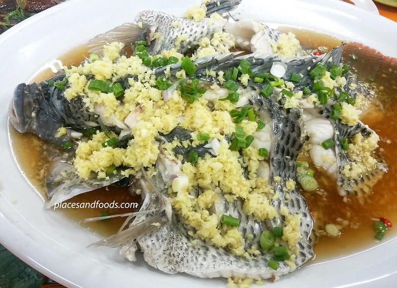 restoran kari kepala ikan cheong hin steamed fish
