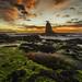 Pulpit Rock Cape Schanck Sunrise by Bjorn Baklien