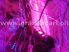 Mood_Lighting_Rental_Metro_Manila_1024.www.grandpearl.ph