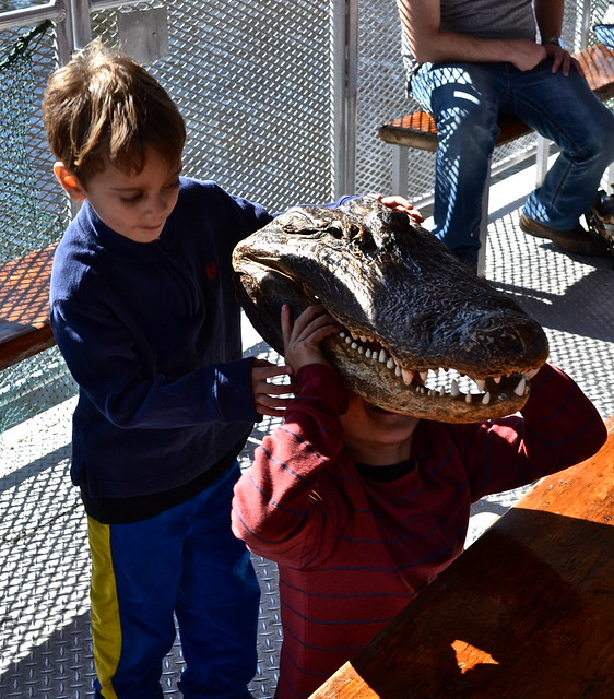 kid fun - swamp tours new orleans