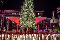 Sundance Square Holidays