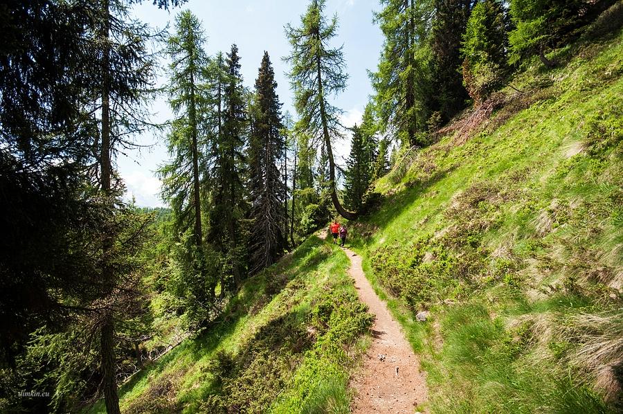 Campo Carlo Magno, Trentino, Trentino-Alto Adige, Italy, 0.002 sec (1/500), f/8.0, 2016:06:29 09:15:12+00:00, 10 mm, 10.0-20.0 mm f/4.0-5.6